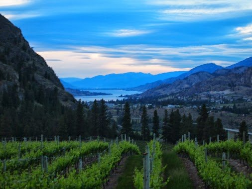 Where to Find the Best Wine, People, and Places