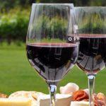 Bordeaux's Best Kept Secret: Lalande-de-Pomerol