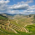 Portugal: A Treasure Trove of Excellent and Affordable Wines